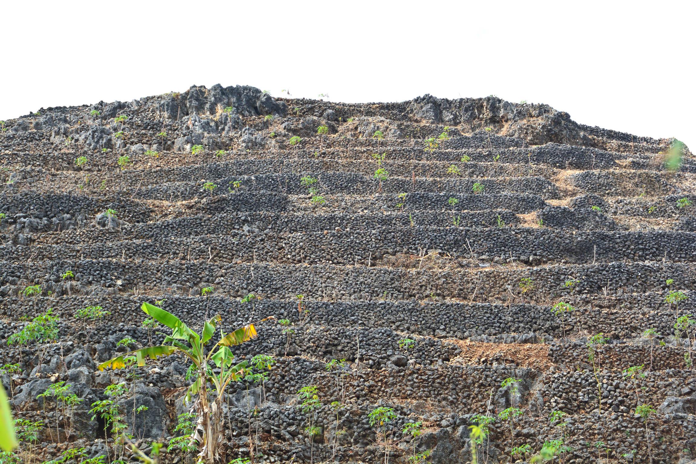 Lahan pertanian tegalan-karang di daerah Rongkop.[Foto:WG]